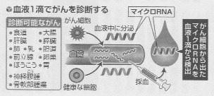 リハビリ通信No.240