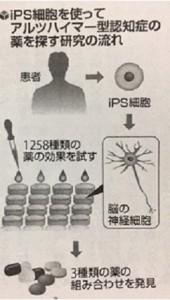 リハビリ通信No.248